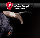 More about lamborghini
